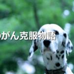 塩沢由貴夫の顔画像とFacebook特定!がんに効くと悪質詐欺・未承認サプリ会社ベストライフデザイン